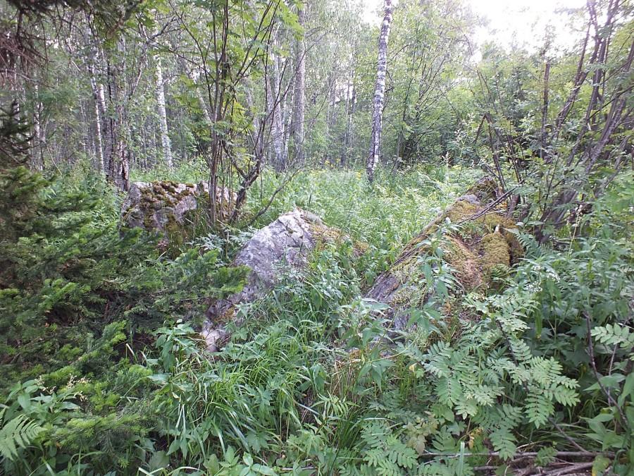 17 камни в лесу