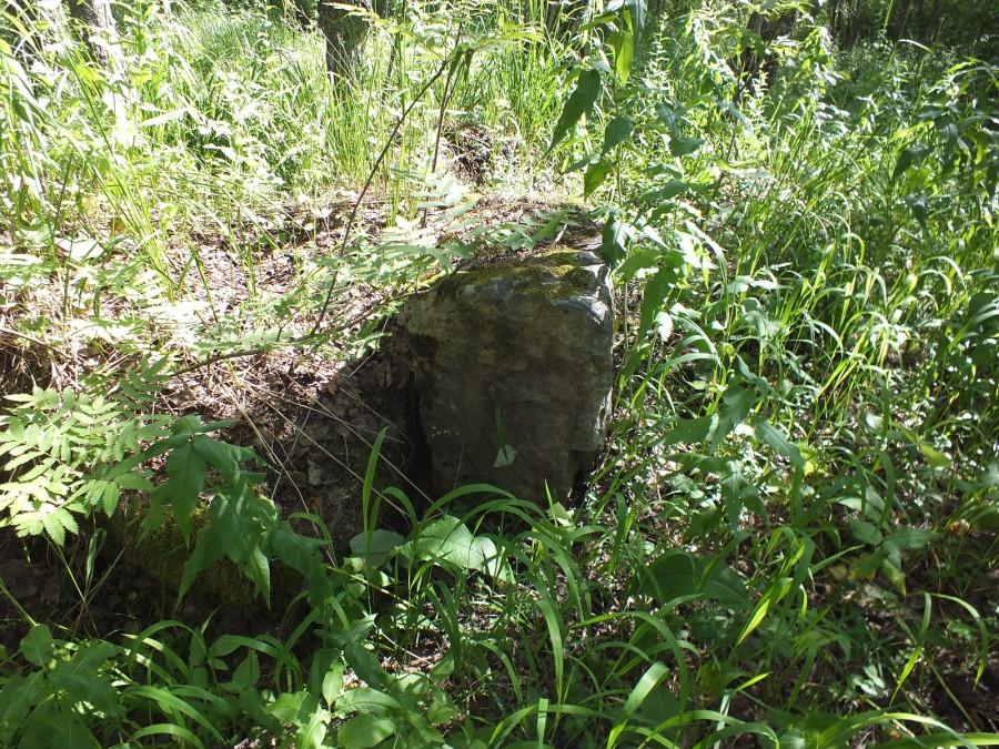 18 камни в лесу