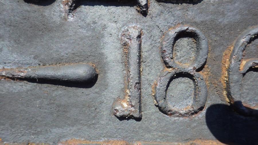 IMGP6806