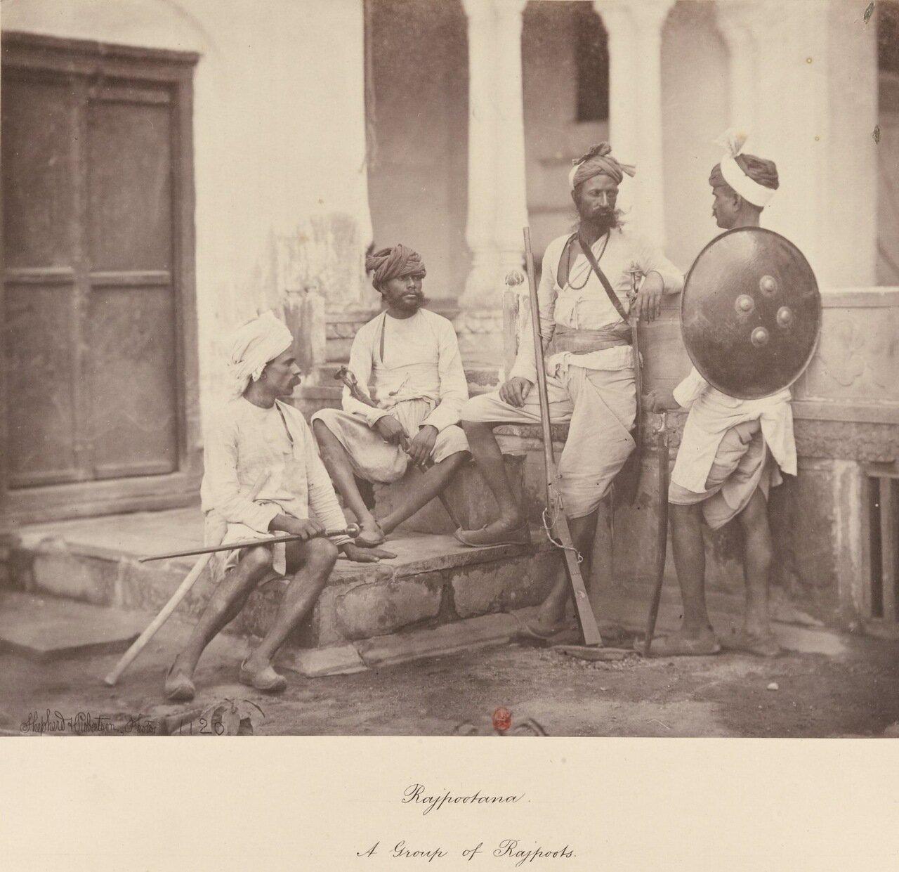 Раджпуты