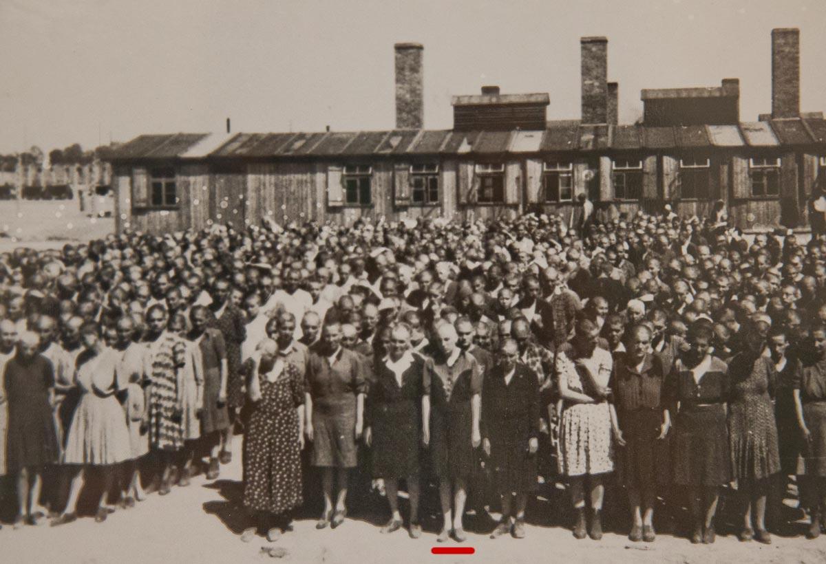 Акушерка из Освенцима