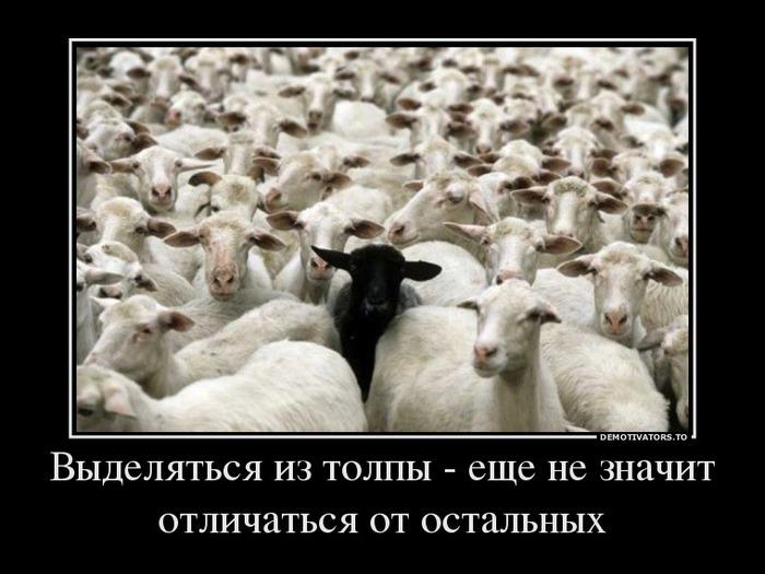 """Résultat de recherche d'images pour """"ovejas blancas y negras"""""""