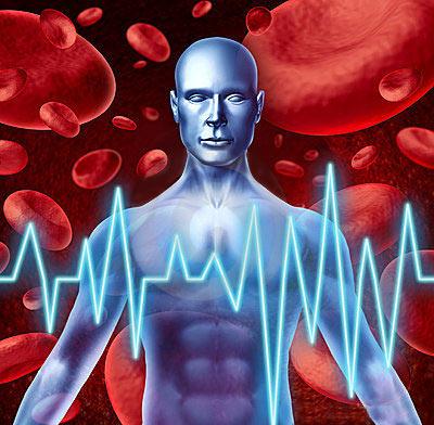 сердечно сосудистые заболевания
