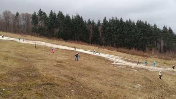«Стою на асфальте я, в лыжи обутый... »: ведущих украинских горнолыжников из-за отсутствия снега заставили кататься наземле (ФОТО) | Русская весна