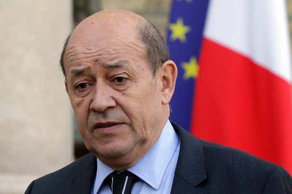 Кровавый ястреб: министр обороны Франции стоит за кулисами бойни в Сирии   Русская весна