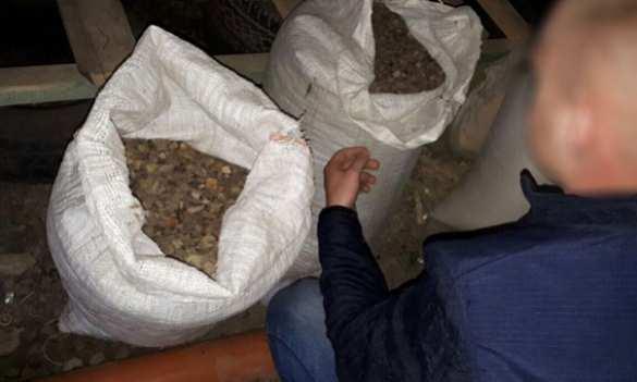 Куда стекается добытый янтарь: на Украине обнаружили подпольный завод и изъяли 300 кг камня (ФОТО) | Русская весна