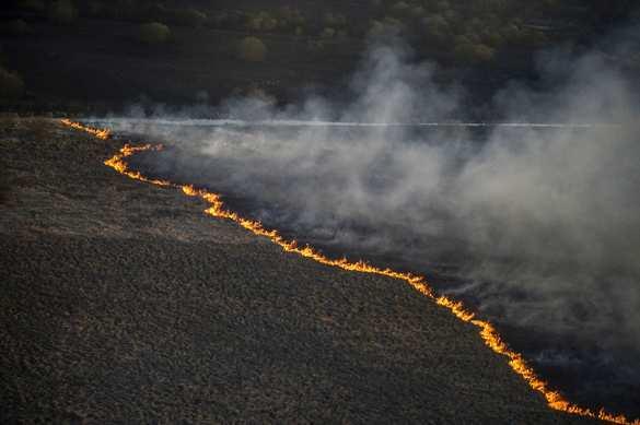 В зоне отчуждения Чернобыльской АЭС всё сильнее полыхает пожар (ВИДЕО, ФОТО) | Русская весна