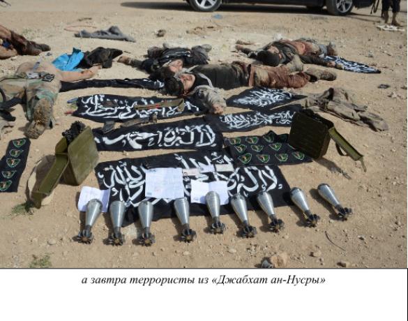 В поисках сирийской «умеренной оппозиции» (ФОТО строго 18+) | Русская весна