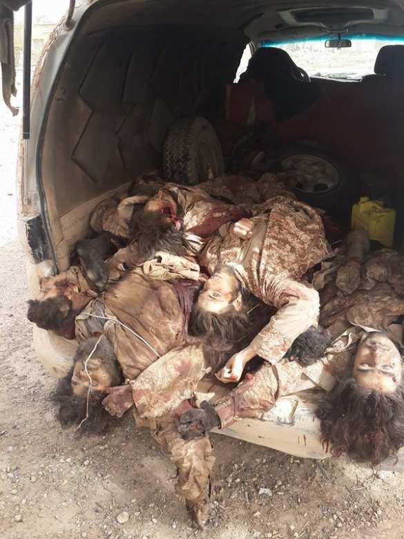 Кровавый провал: мощное наступление ИГИЛ наДейр эз-Зор окончилось бегством, трупы боевиков вывозят в кузовах машин (ФОТО 18+) | Русская весна