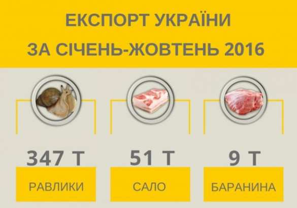 Неожиданно: Украина экспортировала улиток всемеро больше, чем сала (ИНФОГРАФИКА) | Русская весна
