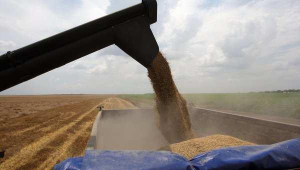 Россия пока не будет запрещать экспорт зерна в Турцию | Русская весна