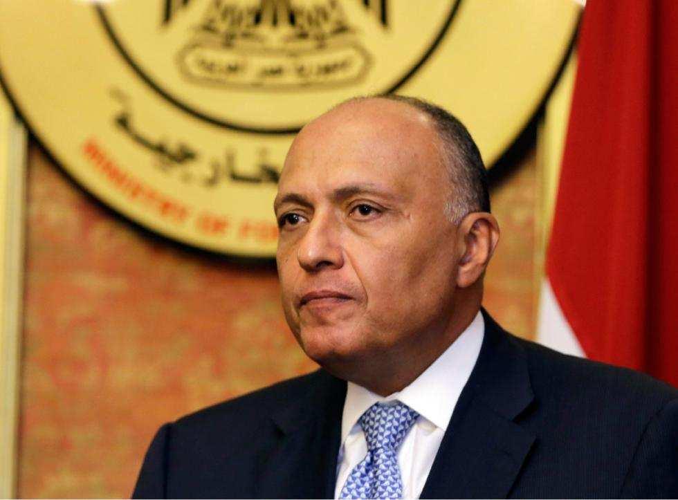 МИД Египта: воздушная операция РФ в Сирии поможет искоренить терроризм | Русская весна