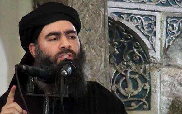 Задержание главаря ИГИЛ аль-Багдади — подробности   Русская весна
