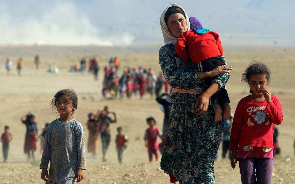 Стал известен объем безвозмездной помощи для Сирии | Русская весна