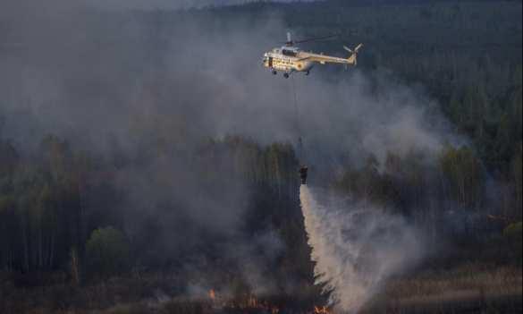 В Чернобыле опасен не конкретно этот пожар, а общий бардак, — эксперт   Русская весна
