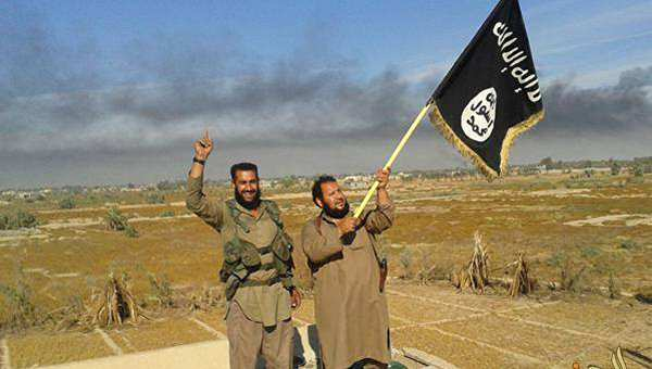 Боевики ИГИЛ в Ираке казнили 50 своих сподвижников | Русская весна