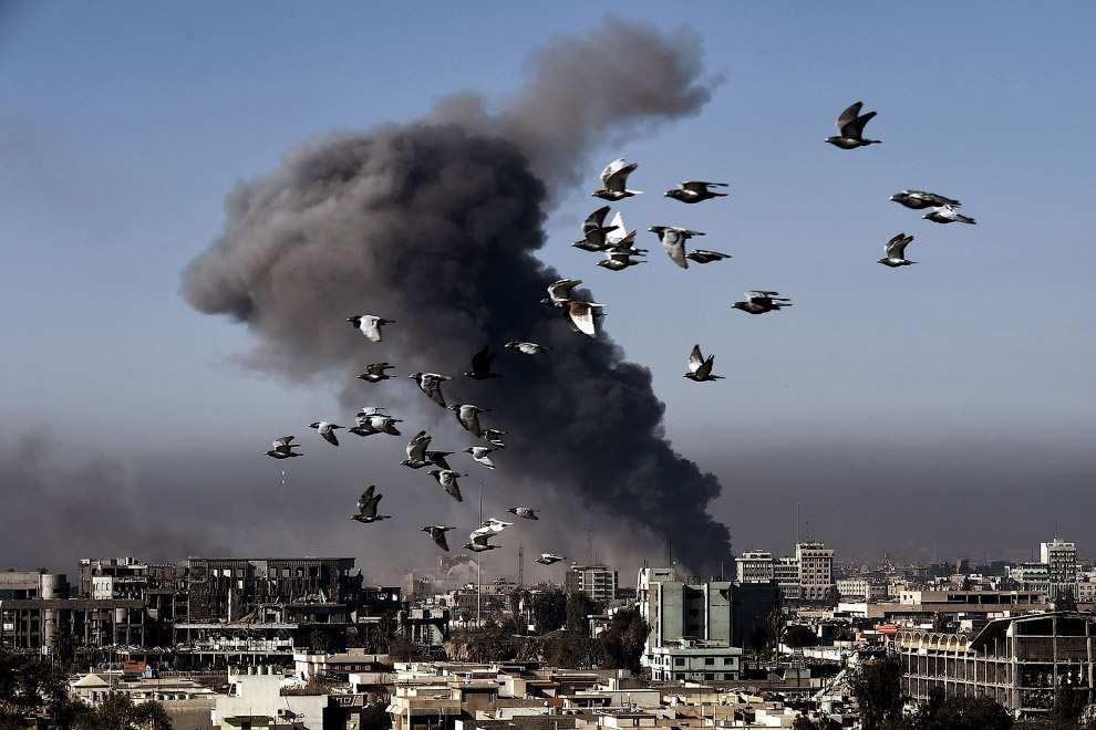 Удар «Томагавками»: США пытаются отвлечь внимание от бойни в ста километрах от Сирии (ФОТО) | Русская весна