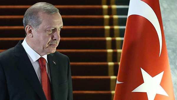 Американский журналист разоблачил планы Эрдогана относительно Сирии и курдов (ФОТО, ВИДЕО) | Русская весна