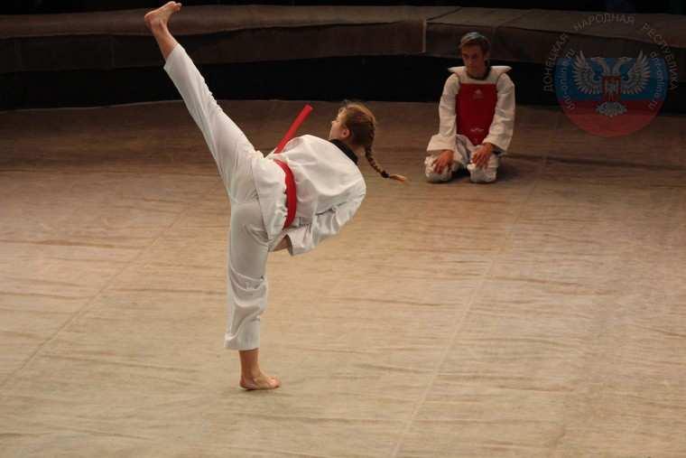 В ДНР прошел фестиваль боевых искусств (ВИДЕО, ФОТО) | Русская весна