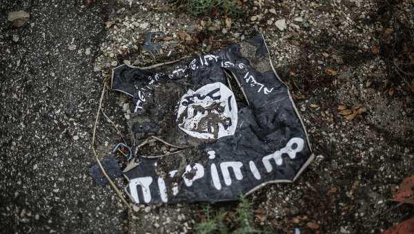 В Сирии уничтожен главный пропагандист ИГИЛ, — Пентагон | Русская весна