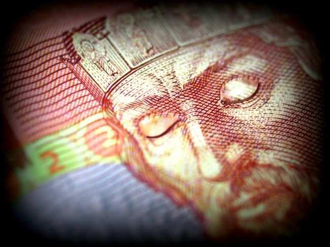 На Украине подсчитали потери из-за введения внешнего управления на предприятиях Донбасса | Русская весна