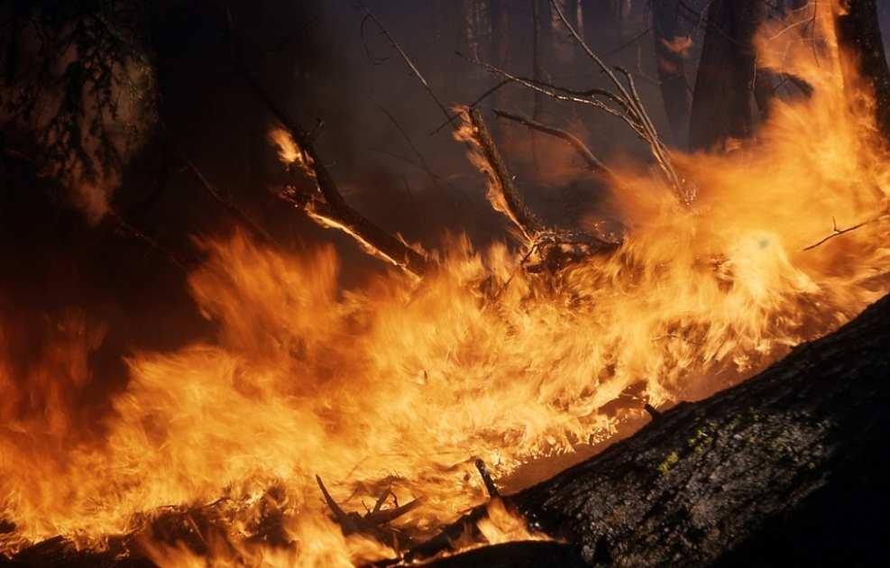 Чернобыльский пожар: что скрывают власти | Русская весна