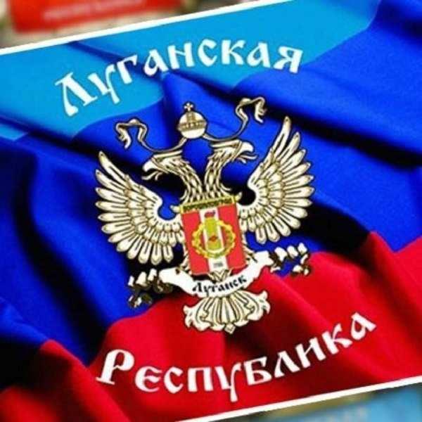 Доля украинских продуктов питания на рынке ЛНР составляет менее 7%, — Минэкономторг | Русская весна