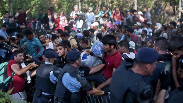 Европа исчерпала возможности по приему мигрантов | Русская весна