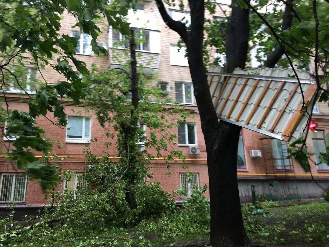 Ураган в Москве: 11 погибших, более 150 пострадавших (ФОТО) | Русская весна