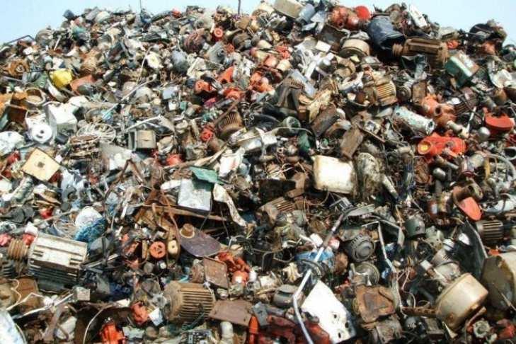 В Одесской области жители круглосуточно охраняют свалку от львовского мусора (ВИДЕО) | Русская весна