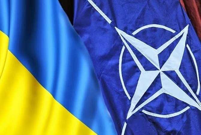Третьей мировой не будет, в ЕС не хотят воевать за Украину, — чиновник НАТО | Русская весна