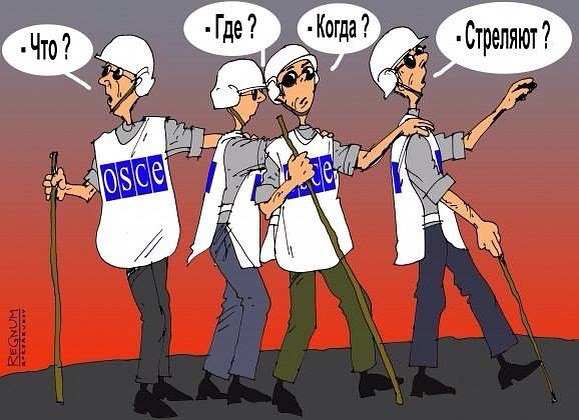 Вся правда о работе ОБСЕ на Донбассе (ВИДЕО) | Русская весна