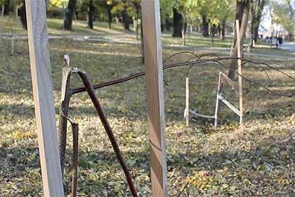 ВОдессе уничтожили аллею «Небесной сотни»  | Русская весна