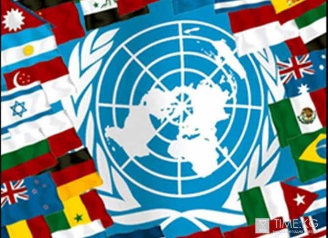 ООН считает, что за время конфликта на Украине погибли более 6450 человек | Русская весна