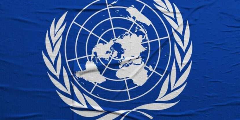 Зрада: В ООН призвали Украину признать документы ДНР и ЛНР | Русская весна