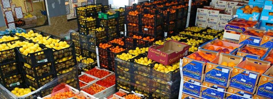 Дешевые турецкие фрукты не спасут Украину от масштабного роста цен на еду, — донецкий экономист | Русская весна