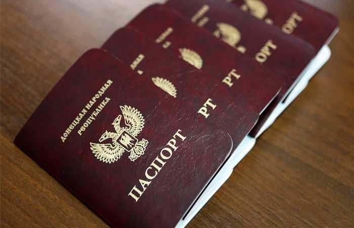 Заявки наполучение паспорта ДНРподали почти 1,2млнжителей Республики (ВИДЕО) | Русская весна