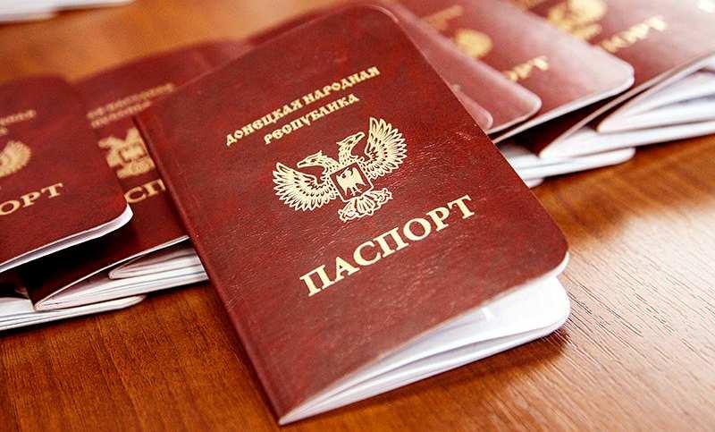 Паспорта ДНР получили более 700 иностранцев | Русская весна