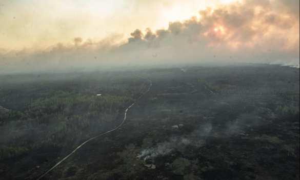 В Киеве ощущается сильный запах гари, стоит дым   Русская весна