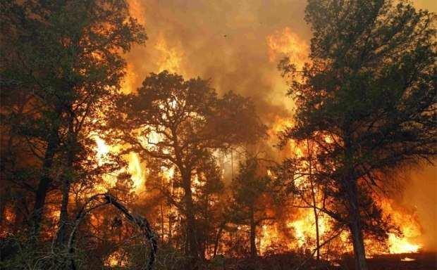 Яценюк: Сегодняшний пожар подЧернобылем — самый большой с1992года   Русская весна
