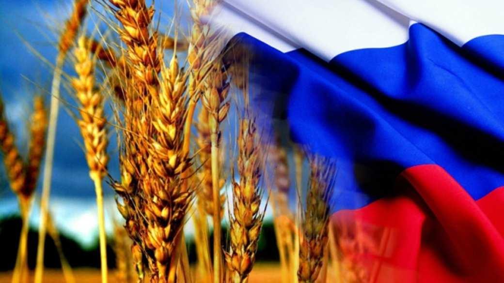 Россия хочет экспортировать пшеницу через сирийские порты, — Рогозин | Русская весна