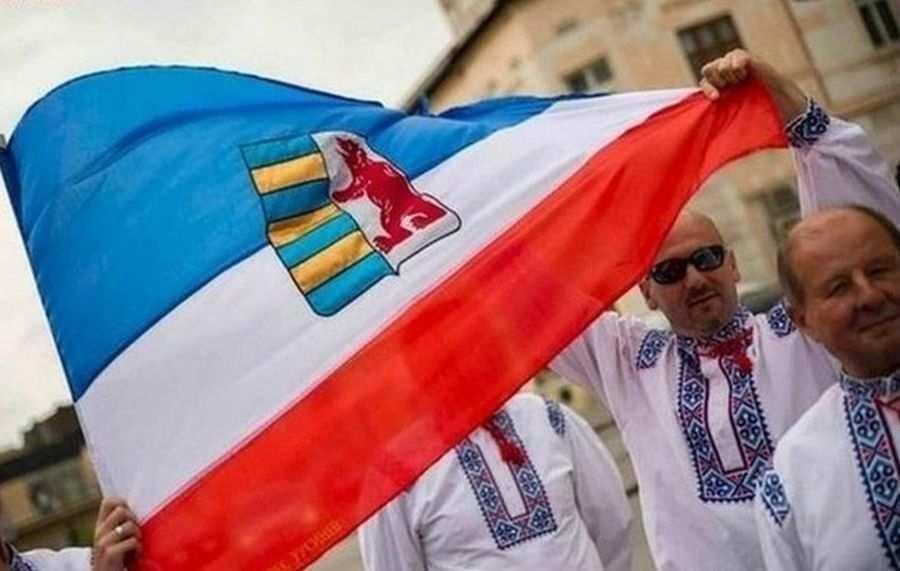 МИД Украины: Венгрия действует так, словно Закарпатье — её территория | Русская весна