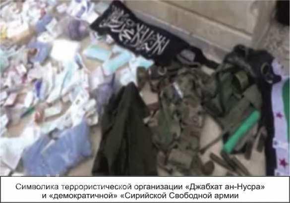 В Сирии нашлись демократичные боевики в волчьей шкуре (ВИДЕО 18+) | Русская весна