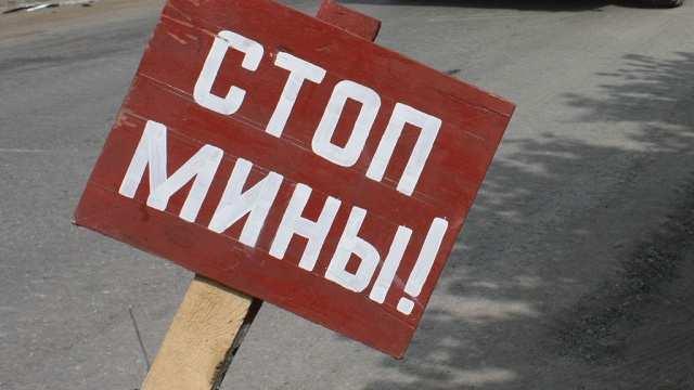 Битва за хлеб: в ДНР разминируют поля гектар за гектаром | Русская весна