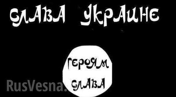 ВАЖНО: Лидер сети экстремистов признал, что закупал на Украине ПЗРК для ИГИЛ | Русская весна