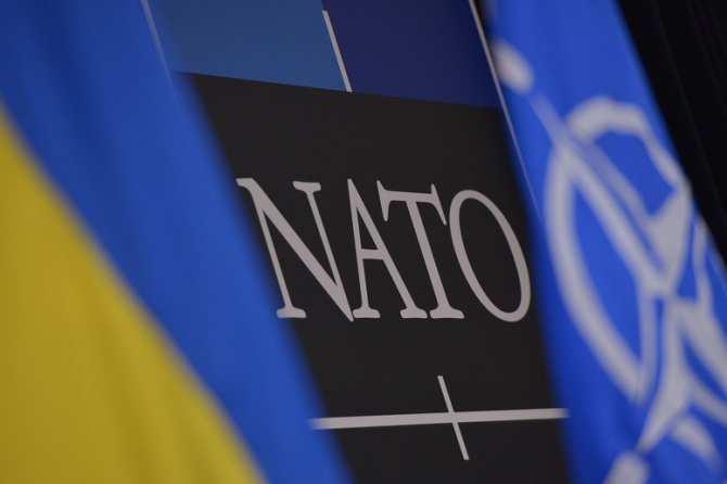 Украина ведет переговоры сНАТО попоставкам оружия   Русская весна