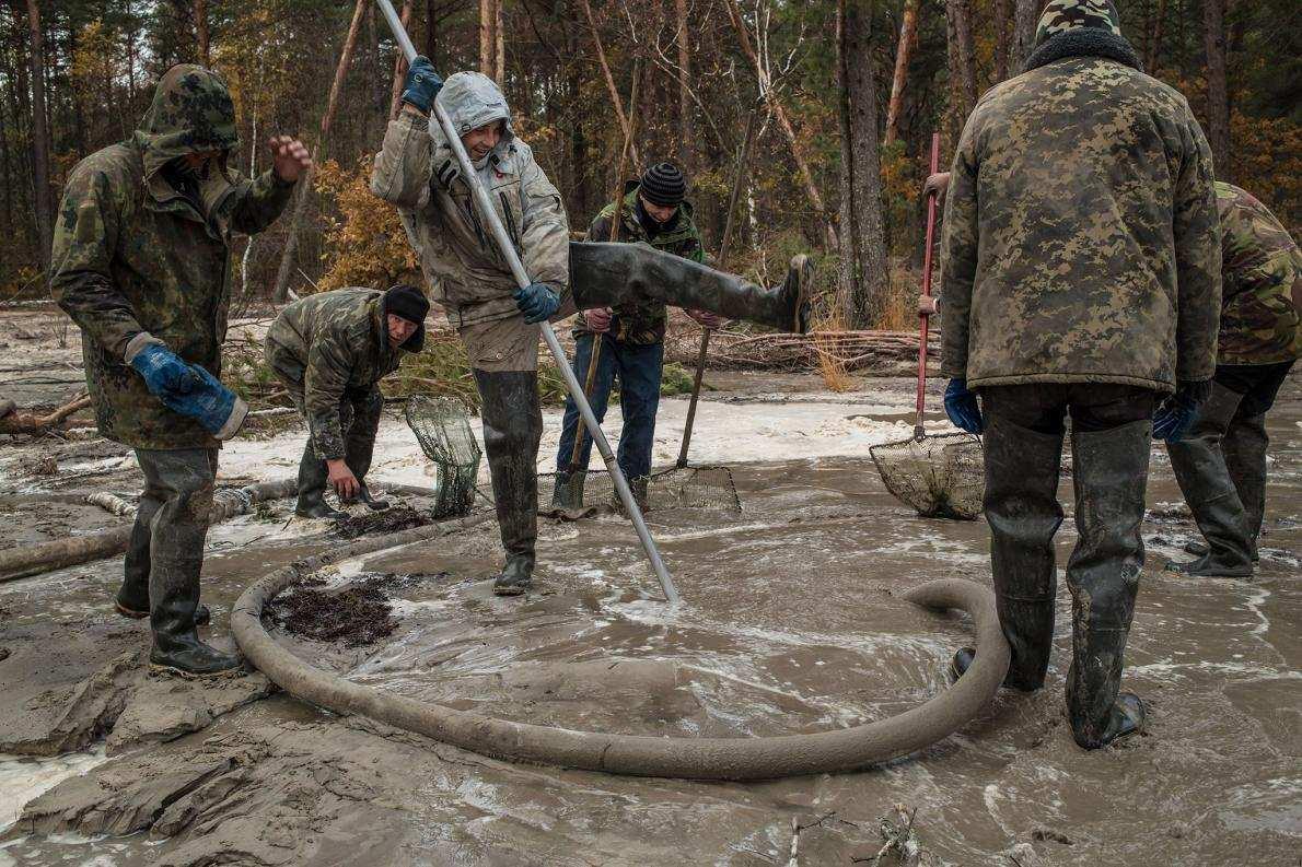 Хаос и уничтожение: National Geographic ужаснулся масштабам нелегальной добычи янтаря на Западной Украине (ФОТОРЕПОРТАЖ) | Русская весна