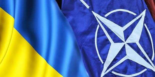 В Госдуме оценили шансы Украины стать членом НАТО   Русская весна
