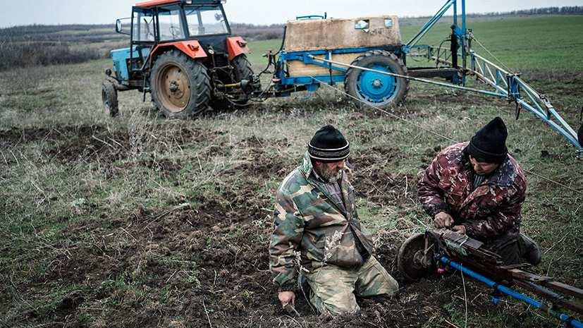 Отдавайте земли: МВФ лишает Украину её главного достояния (ФОТО) | Русская весна