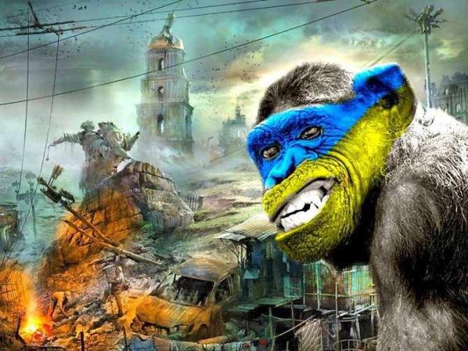 Главное достижение Майдана — вымирание Украины  | Русская весна